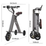 Freego 3 Wheel Folding Electric Bike
